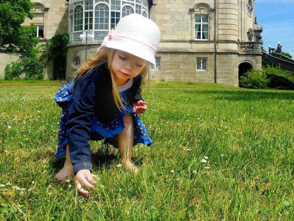 Kind pflückt auf der Schlosswiese blumen und genießt den Sommer