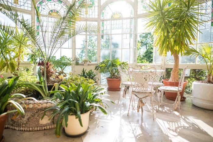 Wintergarten mit verschiedenen Pflanzen als Schmuckstück des Speisesaales